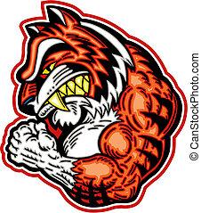tiger, muscular, mascote