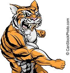 tiger, personagem, luta