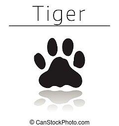 tiger, pista, animal