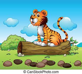 tiger, relaxante