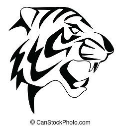 tiger, rosto