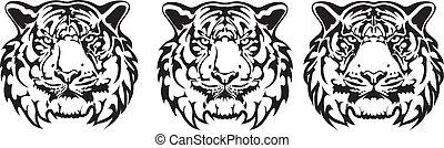 tiger, tatuagem, vetorial, -