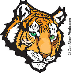 tiger, vetorial, -