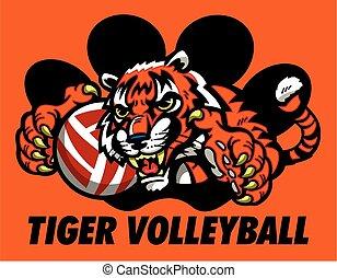 tiger, voleibol