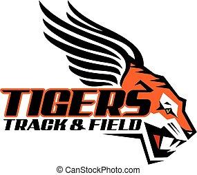 tigres, pista