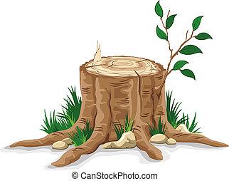 toco árvore