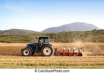 trigo, campos, cereal, agricultura, arar, trator