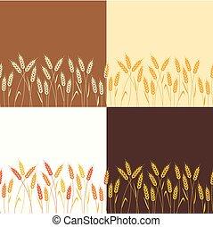 trigo, fundos, seamless, cobrança, vetorial, repetindo