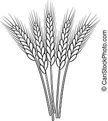 trigo, vetorial, pretas, branca, orelhas, grupo