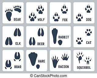 trilhas, vetorial, jogo, ícones animais