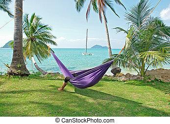 tropicais, férias