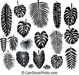 tropicais, folhas, jogo