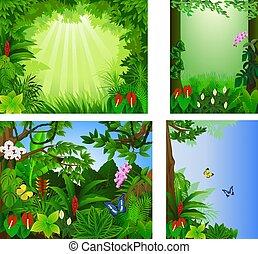 tropicais, grande, vetorial, floresta, jogo, quadro, bonito, ilustração, ícone