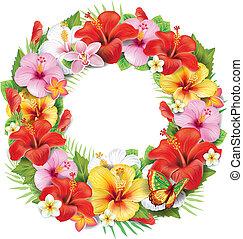 tropicais, grinalda, flor