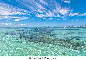 tropicais, isla, méxico, mar, mujeres