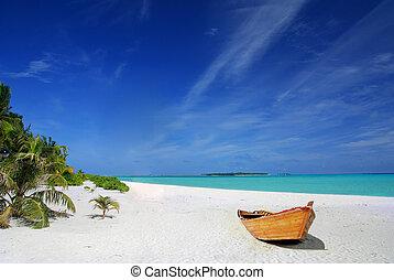 tropicais, navio, praia