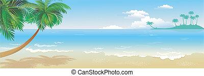 tropicais, panorâmico, praia, palma