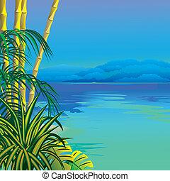 tropicais, praia.