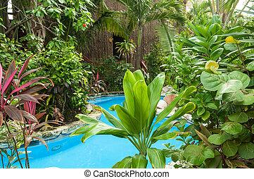 tropicais, recurso