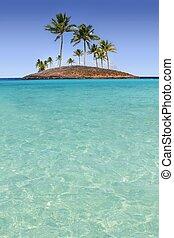 turquesa, ilha, árvore, tropicais, palma, paraisos , praia
