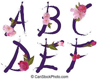 um, primavera, letras, alfabeto
