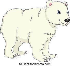 urso polar, fundo, cute, caricatura, branca