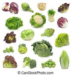 vegetal, cobrar, repolho, verde