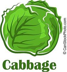 vegetal, folhas, crocante, repolho, verde