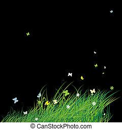 verão, borboletas, experiência verde, campo