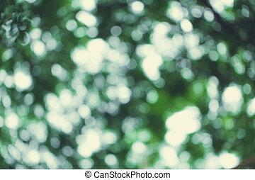 verão, cor natureza, vindima, tone., árvore, bokeh, experiência verde, borrão