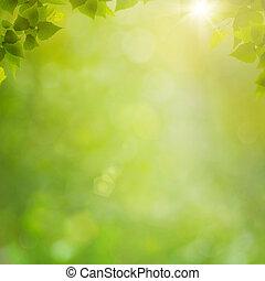 verão, natural, abstratos, fundos, bokeh, floresta, foliage, fresco