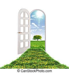 verão, porta aberto, guiando