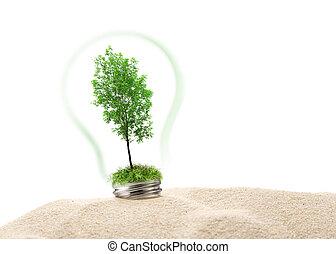 verde, areia, árvore cinza, lâmpada