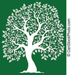 verde branco, 2, árvore, fundo
