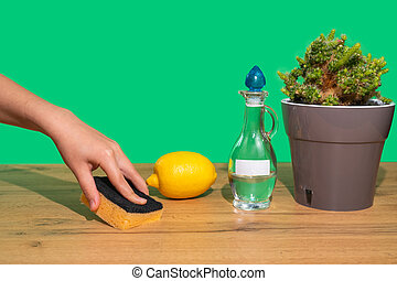 verde, madeira, ecológico, esponja, non-toxic, vinagre, limpeza, tabela, agent., natural, wipes, mulher, lemon., mão, products., experiência., lar