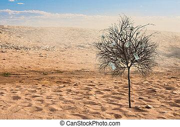verde, só, árvore, deserto