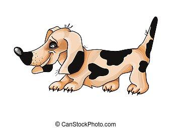 vermelho, experiência., cão, vetorial, illustration., bassê