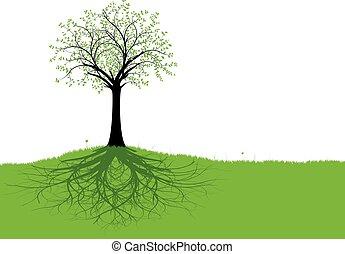 vetorial, árvore, raizes