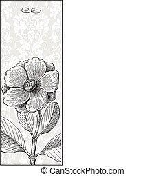 vetorial, alto, flor, experiência preta