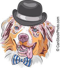 vetorial, cão, hipster, caricatura, pastor australiano