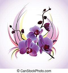 vetorial, cartão cumprimento, orquídeas