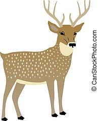 vetorial, cute, deer., ilustração