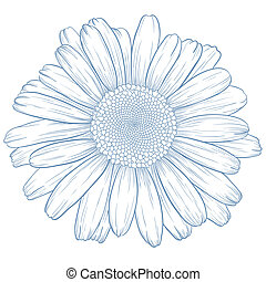 vetorial, daisy.