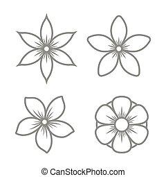 vetorial, experiência., branca, ícones, jogo, jasmine, flor