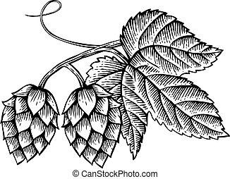 vetorial, folhas, vindima, ícone, (hand, desenhado, pulos, gravado, style), ilustração