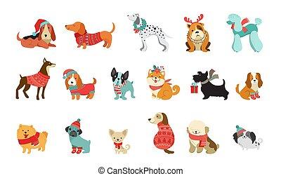 vetorial, gráfico, animais estimação, camisolas de malha, cute, scarfs, semelhante, natal, cachorros, ilustrações, acessórios, elementos, feliz, cobrança, chapéus, tricotado