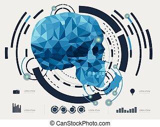 vetorial, ilustração, cranio