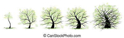 vida, antigas, tree:, idade, juventude, maioridade, infancia, fases, adolescência