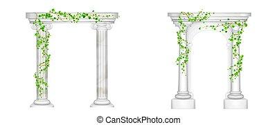 videiras, antiga, colunas, mármore, arco, hera