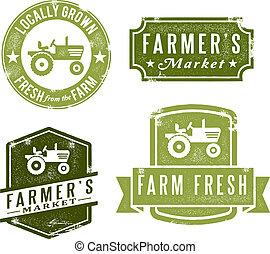 vindima, selos, fresco, mercado, agricultores